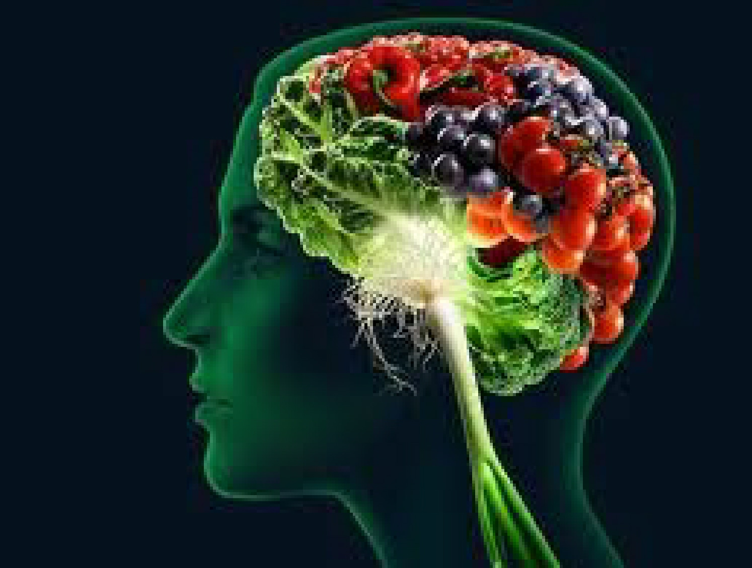 Memory enhancing vitamins and herbs